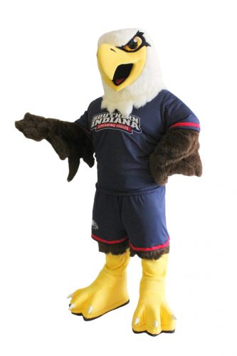 Birds Mascots